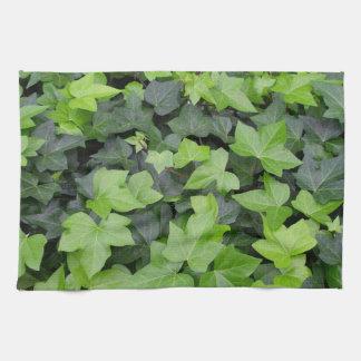 Linge De Cuisine Copie botanique de lierre vert