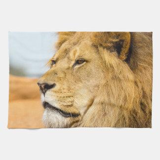 Linge De Cuisine Grand lion regardant loin