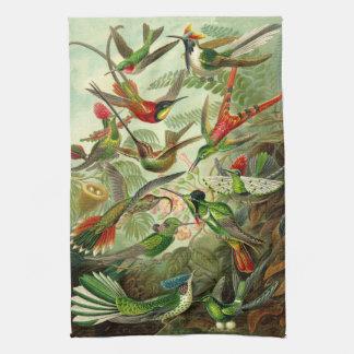 Linge De Cuisine Illustration de colibri d'Ernst Haeckel