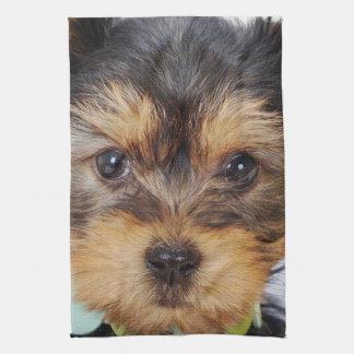 Linge De Cuisine Yorkshire Terrier adorable