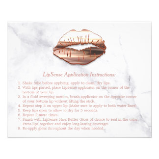 L'instruction de marbre de maquillage de lèvres prospectus 11,4 cm x 14,2 cm