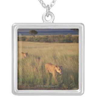 Lion 2 collier
