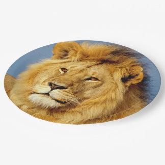 Lion africain 2 assiettes en papier