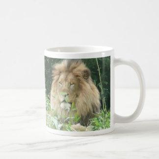 Lion au zoo national 2 mug blanc
