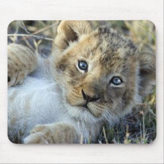 Lion bébé tapis de souris