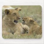 Lion Brothers Tapis De Souris