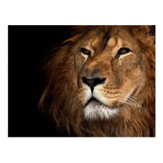 lion carte postale