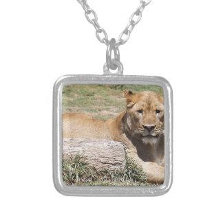 Lion Collier