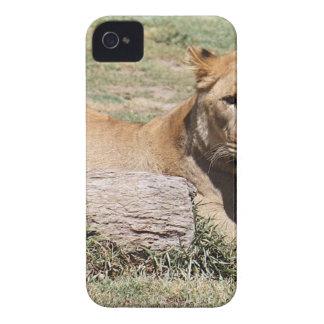 Lion Coque iPhone 4 Case-Mate