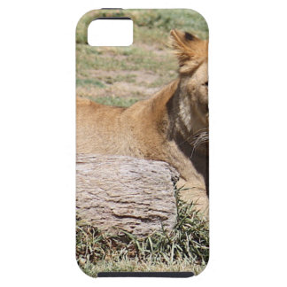 Lion Coques Case-Mate iPhone 5