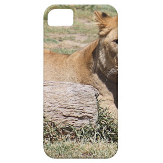 Lion Coques iPhone 5