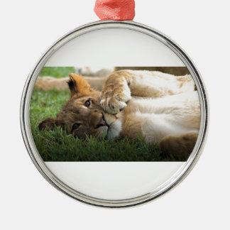 Lion CUB africain Ornement Rond Argenté