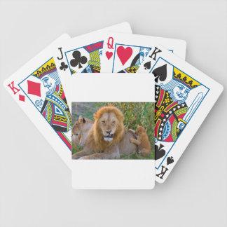 Lion CUB mignon jouant avec le papa, Kenya Jeu De Cartes