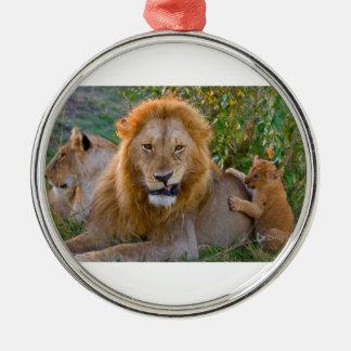 Lion CUB mignon jouant avec le papa, Kenya Ornement Rond Argenté