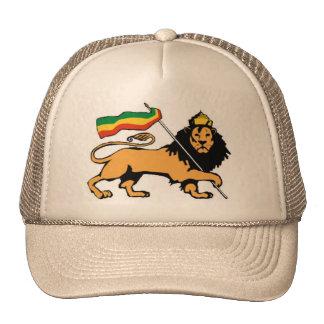 Lion de casquette de Judah