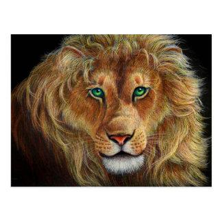 lion de Judah Carte Postale