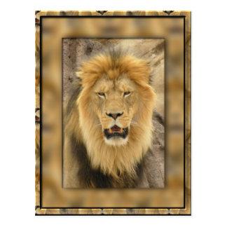 Lion encadré cartes postales