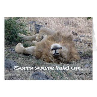 """Lion """"étendu vers le haut"""" de la carte (masai"""