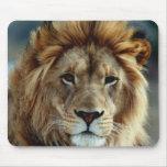 Lion Mousepad Tapis De Souris