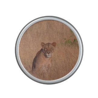 Lion Haut-parleur Bluetooth