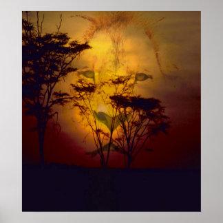 Lion regardant au-dessus du coucher du soleil poster