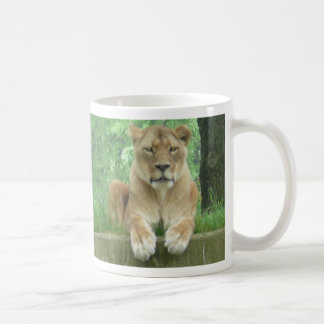 Lionne au zoo national mug blanc