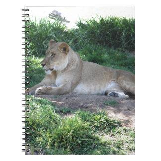 Lionne Carnet