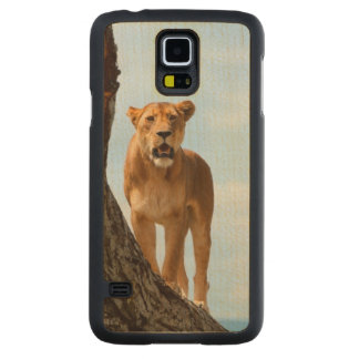 Lionne Coque Slim Galaxy S5 En Érable