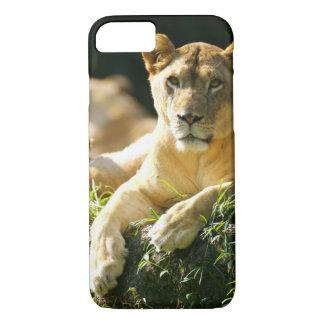 Lions Coque iPhone 7
