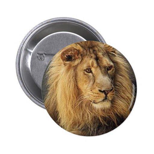 Lions dans les cadeaux et le tee - shirt sauvages pin's