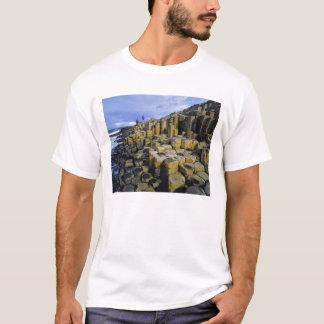 L'Irlande du Nord, comté Antrim, géant T-shirt