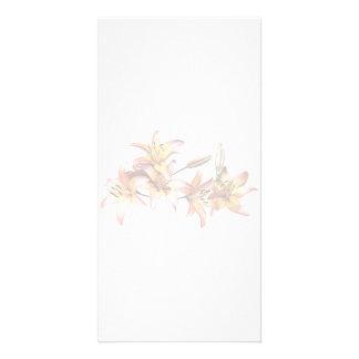 Lis Abricot-Colorés Cartes De Vœux Avec Photo