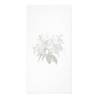 Lis blancs carte avec photo