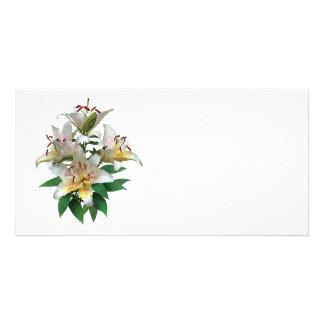 Lis blancs gracieux modèle pour photocarte
