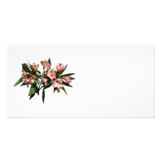 Lis et feuille asiatiques cartes de vœux avec photo