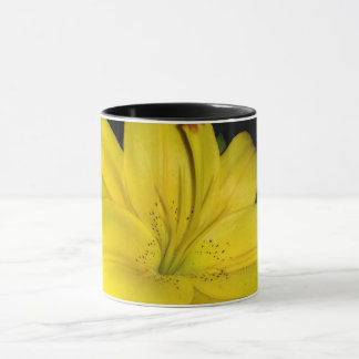Lis jaune tasses