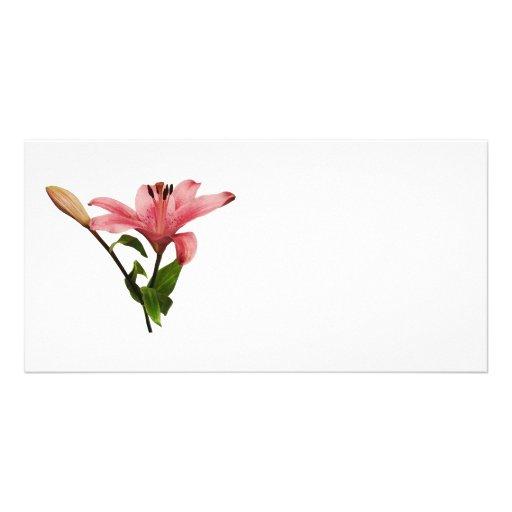 Lis rose avec le bourgeon photocarte personnalisée
