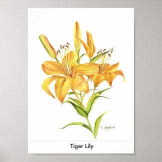 Lis tigré poster