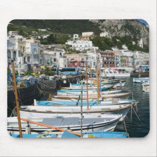 L'ITALIE, Campanie, (baie de Naples), CAPRI : Mari Tapis De Souris