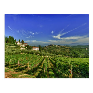 L'Italie, Toscane, Greve. Les vignobles de Carte Postale