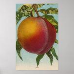 Lithographie de Chromo de fruit de PeachFruitState Posters