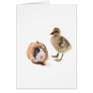 little goose and guinea pig carte de vœux