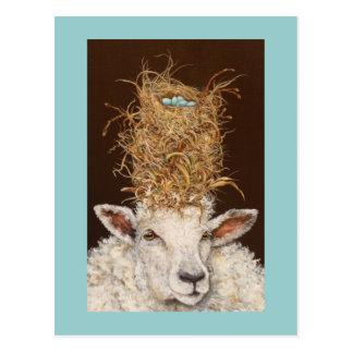 Livin haut sur la carte postale de moutons
