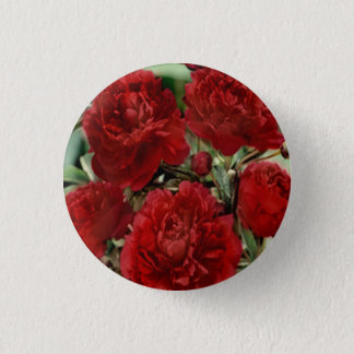 L'oeillet rouge fleurit le bouton badge