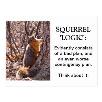 Logique d'écureuil carte postale