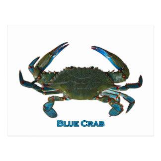 Logo atlantique de crabe bleu carte postale