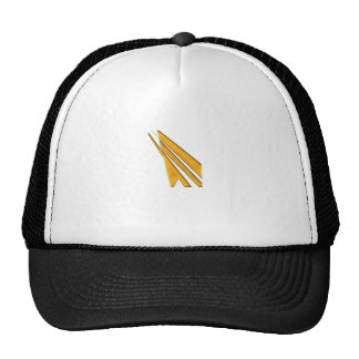 logo d'or casquettes