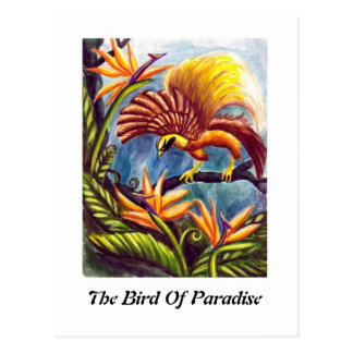 L'oiseau du paradis cartes postales