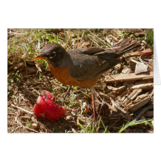 L'oiseau tôt obtient… carte de vœux