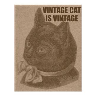 LOLcat d'antan Prospectus 21,6 Cm X 24,94 Cm